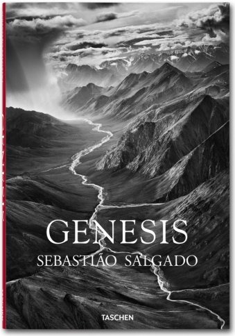 cover_fo_salgado_genesis_trade_1302181714_id_618549