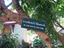 Wat Phra Singh - Garden of proverbs