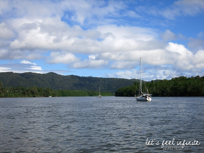 Daintree River 1