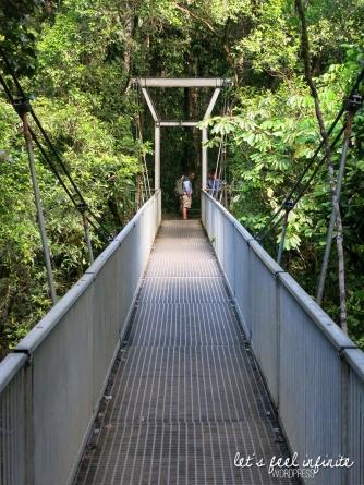 Mossman Gorge - Pont suspendu