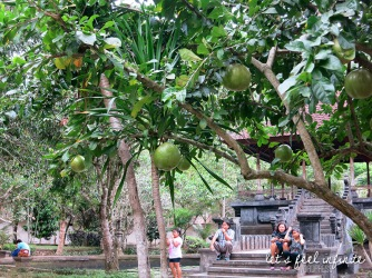 Tirta Empul - Fruits