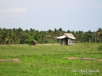 Ubud - Near Anulekha