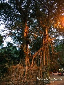 Ubud - Near the Monkey Forest 2