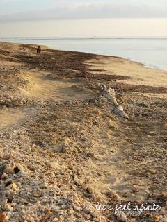 Plage de coraux sur l'île de Gili Air