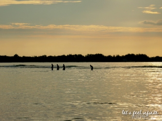 Silhouettes dans la mer avant le coucher de soleil