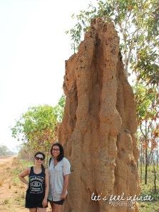 Litchfield Park - termitières 1
