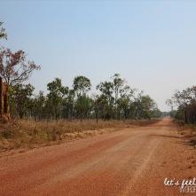 Litchfield Park - termitières 3