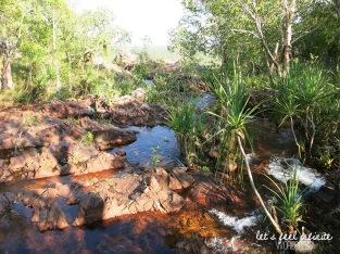 Litchfield Park - Wangi Falls Promenade 2