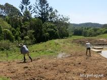 Wybalena Farm 4