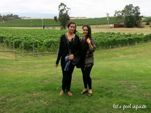 Yarra Valley Wineries Tour - Midi 2