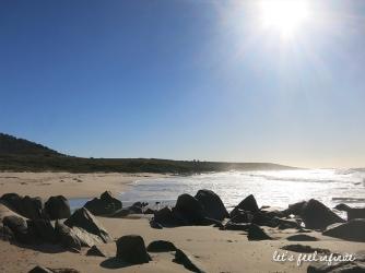 Tasmanie - Côte Est 6