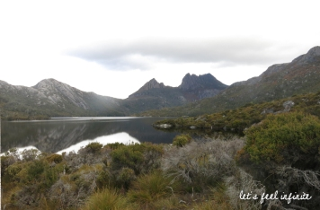 Cradle Mountain 0