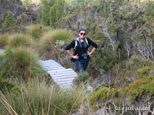 Cradle Mountain 4