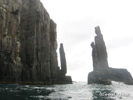 bruny-island-cruise